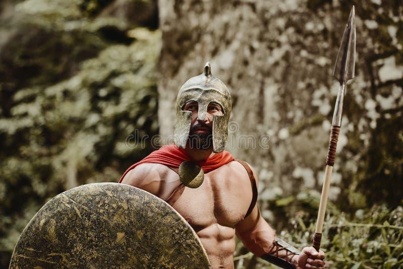 Skäggig sträng krigare i gladiatordräkt fotografering för bildbyråer