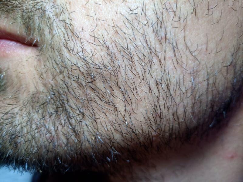 Skäggig ung man, skäggstubb nära Orakat mer än en vecka arkivfoton