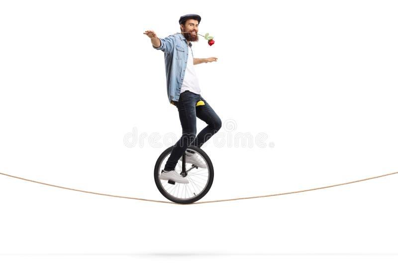 Skäggig ung man som rider en enhjuling på ett rep och rymmer en röd ros med hans mun arkivbild