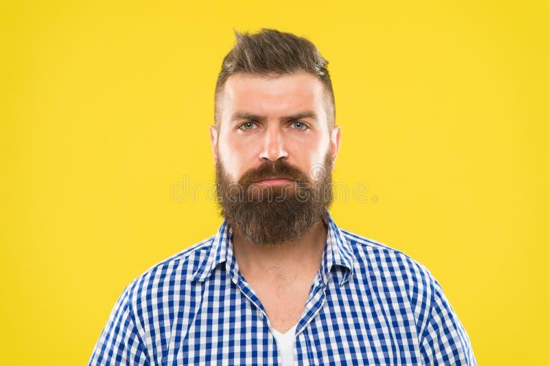 Skäggigt och allvarligt Skäggmode och barberarebegrepp Bakgrund för skäggigt lantligt skägg för hipster för man gul stilfullt royaltyfri bild