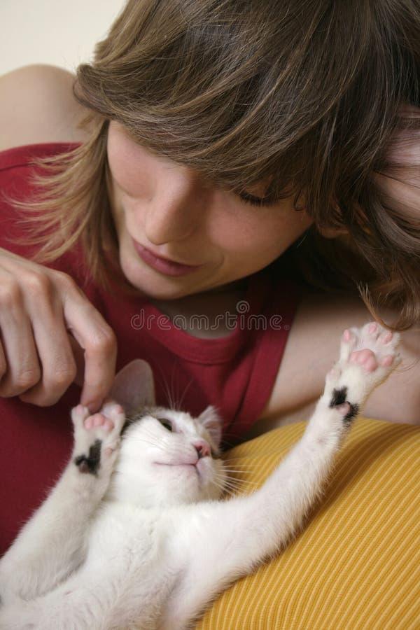 skämtsam kattunge 2 arkivfoto