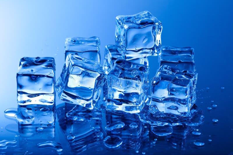 skära i tärningar is fotografering för bildbyråer