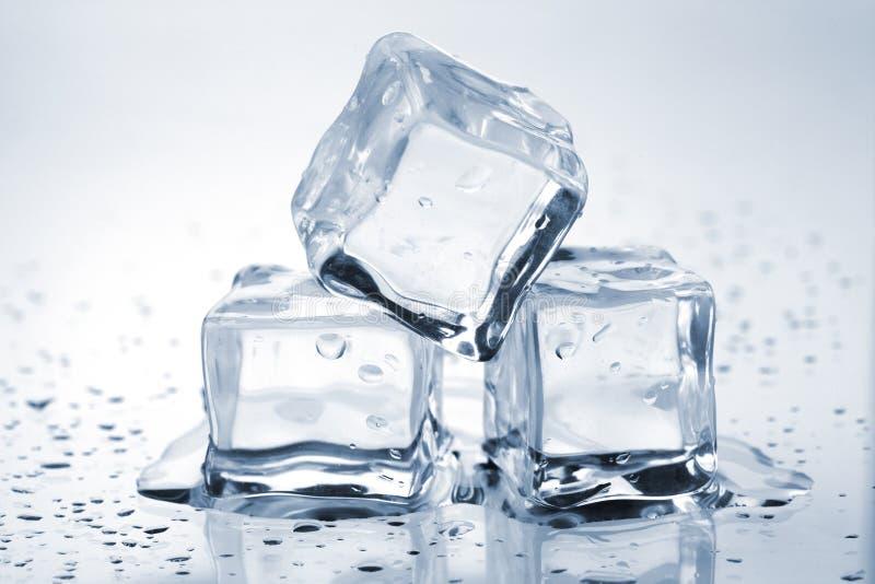 skära i tärningar is som smälter tre royaltyfri foto
