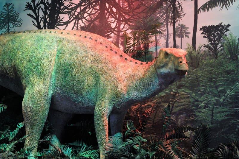 Skärm av den nya dinosaurieartTheiophytalia kerrien på trädgården av gudbesökaremitten arkivfoto