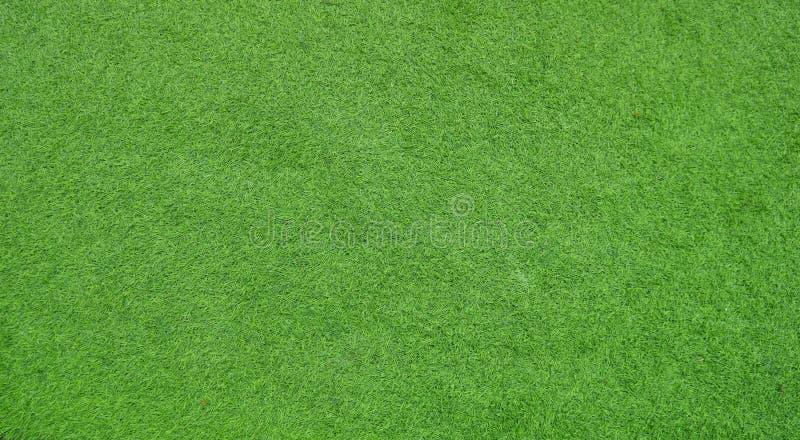 Skärm för grönt gräs för bakgrund royaltyfri fotografi