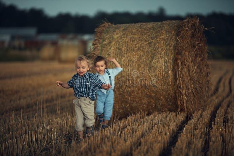 Skålfulla tvillingbröder som springer på åkermark royaltyfri foto