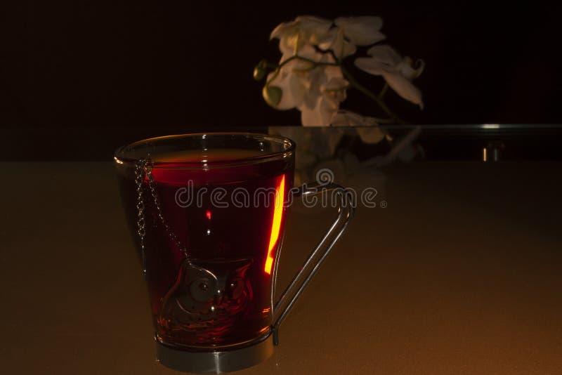 Skåp och individuell teapot fyllda med jamaica-blommor som hänger i teapoten och lägger sig på bordet medan en stav med vitt royaltyfria bilder