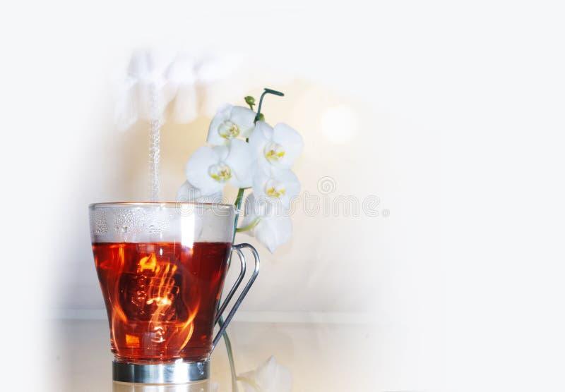 Skåp och individuell teapot fyllda med jamaica-blommor som hänger i teapoten och lägger sig på bordet medan en stav med vitt arkivfoto