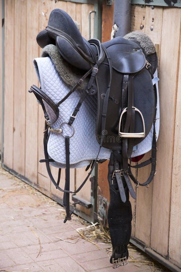 Skóra comber dla equestrian sporta obwieszenia w stajni obraz royalty free