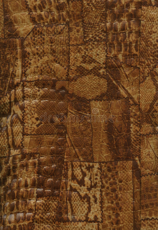 skóry naturalna tekstura obraz royalty free
