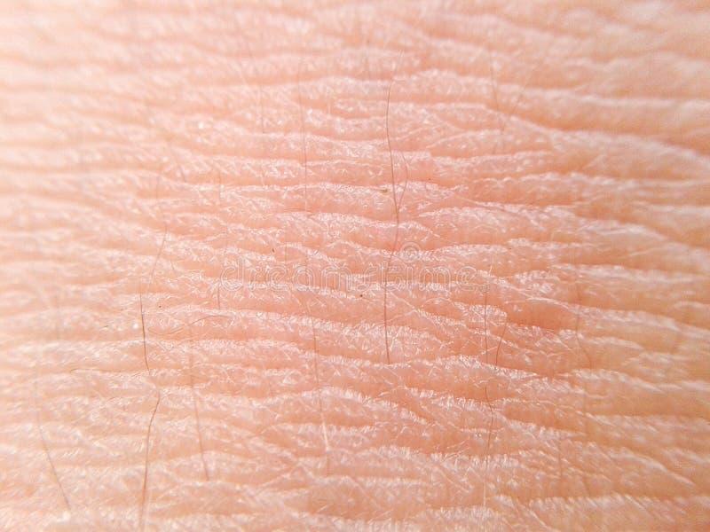 Skóry tekstura makro- obrazy stock