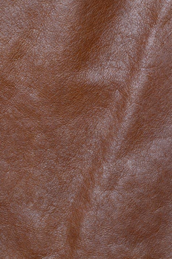 skóry wołowej skóra zdjęcie stock