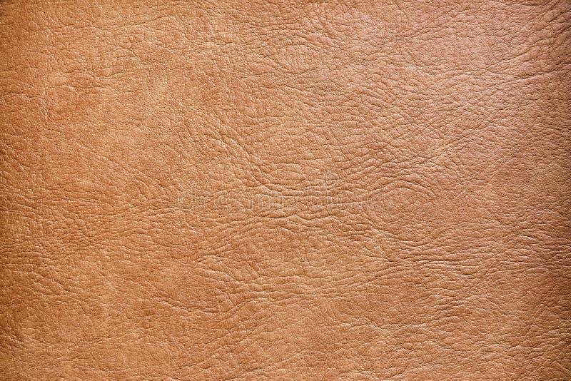 skórzana konsystencja brown obraz royalty free