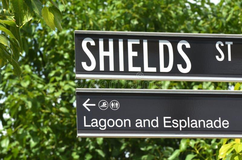 Sköldgatan undertecknar in rösen Queensland Australien arkivfoto