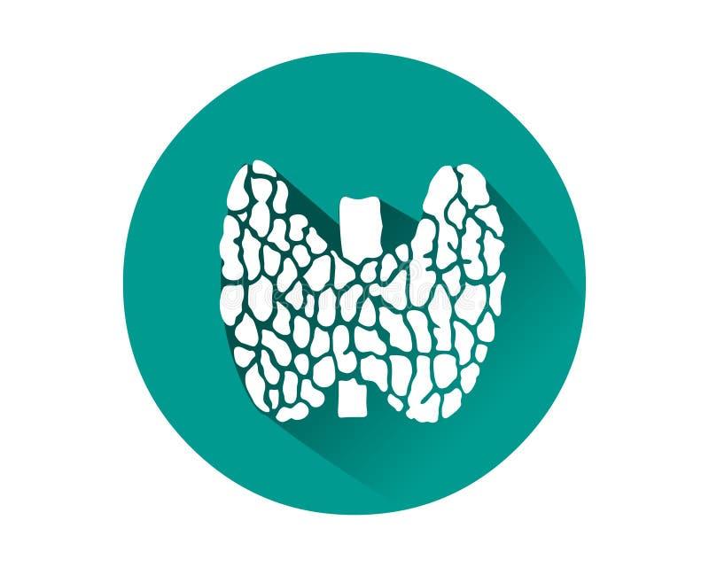 Sköldkörtelsymbolsvektor Mänskligt inre organ stock illustrationer
