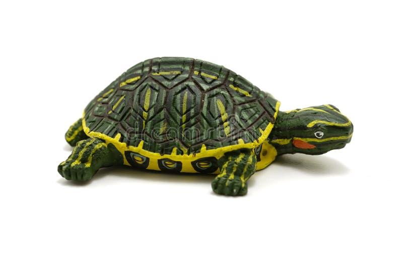 sköldpadda arkivbild