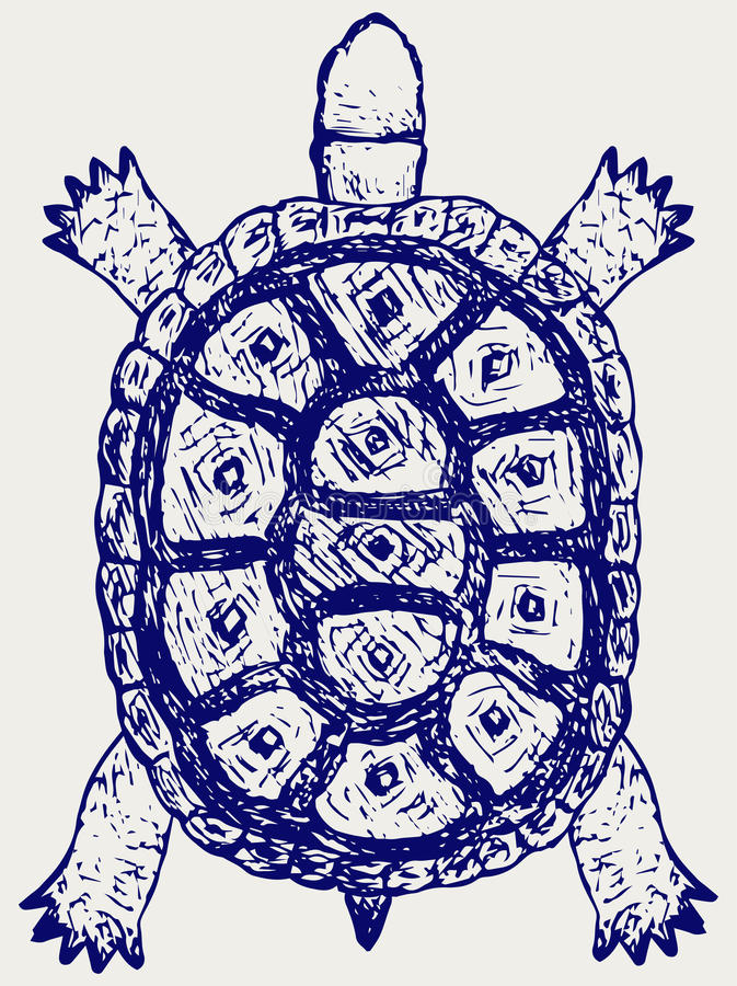 sköldpadda för testudinidae för reptilar för dwellingfamiljland stock illustrationer