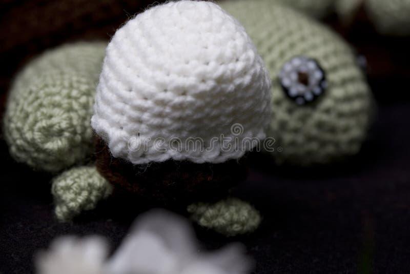 Sköldpadda i ett ägg arkivbild