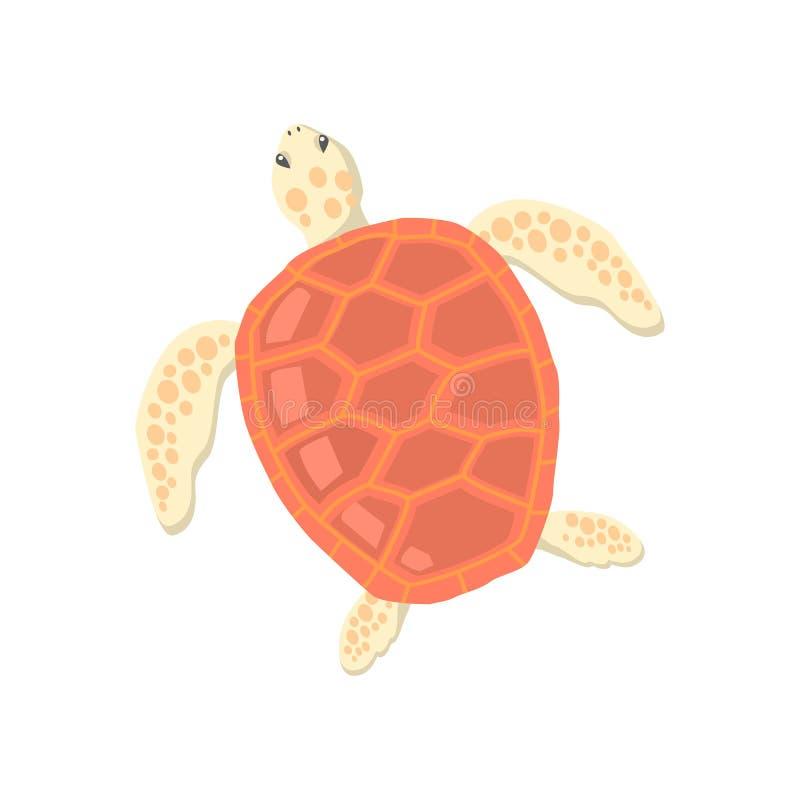 Sköldpadda som isoleras på vitbakgrund royaltyfri illustrationer