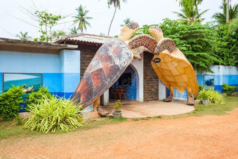 Sköldpaddafristadmitt, Hikkaduwa arkivbilder