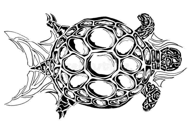 Sköldpaddaprydnad royaltyfri illustrationer