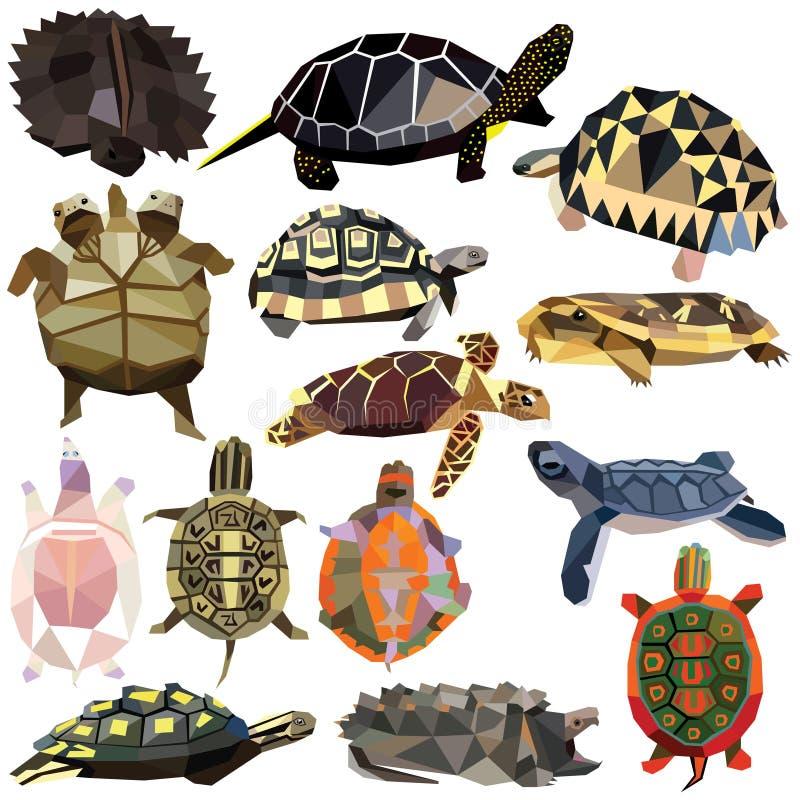 Sköldpaddauppsättning vektor illustrationer