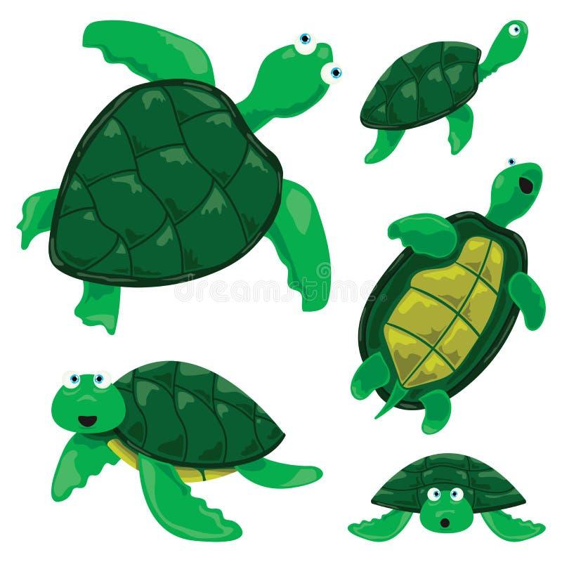 sköldpaddor vektor illustrationer