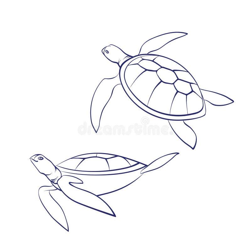 Sköldpaddor för hav för vektoröversiktstecknad film Grafisk undervattens- djur illustration som isoleras på vit bakgrund för färg stock illustrationer