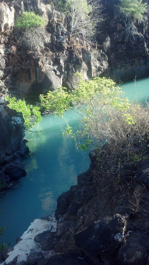skönhet av det Stillahavs- royaltyfria foton