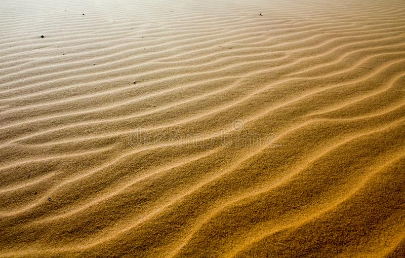 Skönhet av landskapöknen, röd sanddyn Mui Ne i Vietnam royaltyfri fotografi