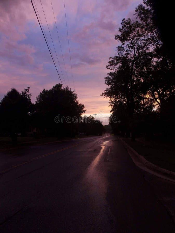 Skönhet efter stormen royaltyfria bilder