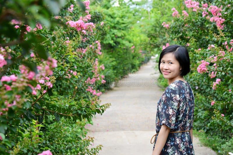 Skönhet i vägen av blomman för kräppmyrten royaltyfria foton