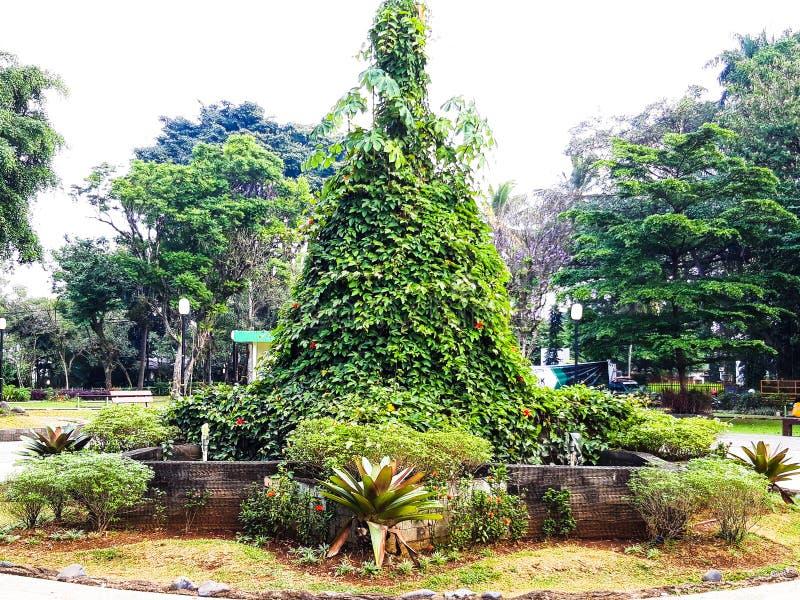 Skönheten av den Bogor stadsfyrkanten arkivbild