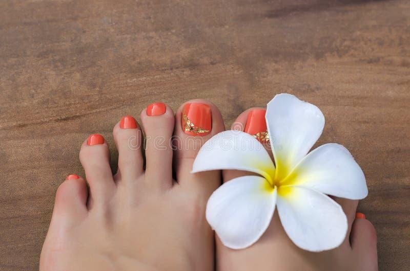 Skönhetfoto av den trevliga apelsinen pedicured fot royaltyfri foto