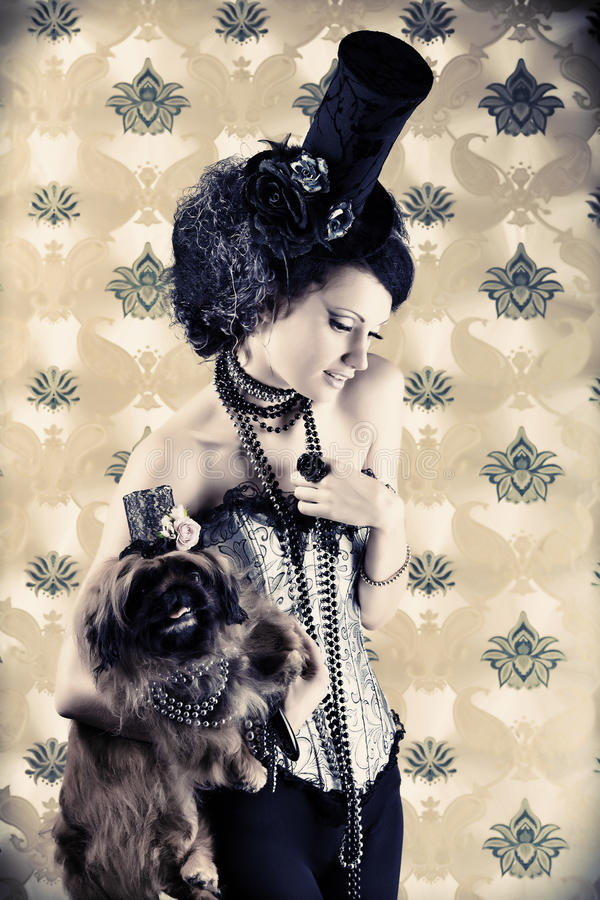 skönhethund royaltyfria foton