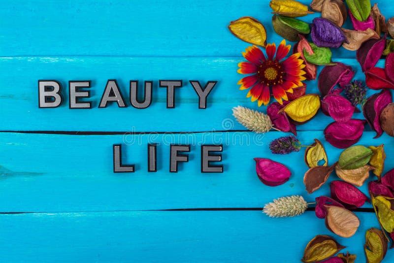 Skönhetlivtext på blått trä med blomman royaltyfri fotografi