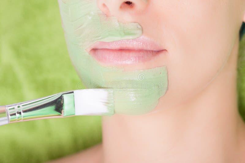 Skönhetsalong. Kosmetolog som applicerar den ansikts- maskeringen på kvinnaframsidan. royaltyfri foto