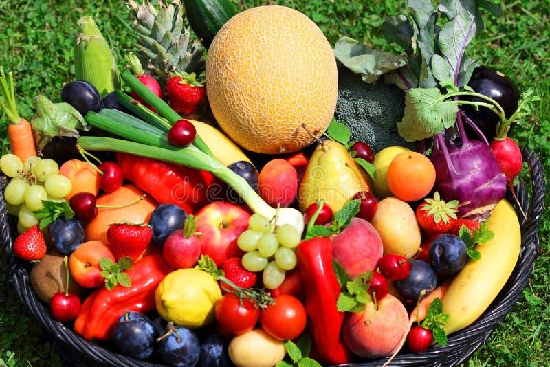 Skörd av frukter och grönsaker arkivfoton