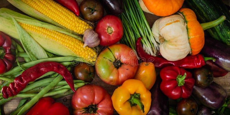 Skörd höst Panorama- samling av nya sunda frukter och grönsaker Sund ätabakgrund Ny röd pepparpaprika på trä i tappninginställnin royaltyfri bild
