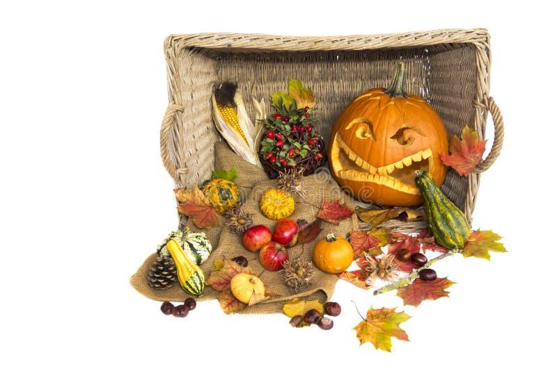 Skörd i höst med naturlig grönsaker och halloween pumpa arkivbilder