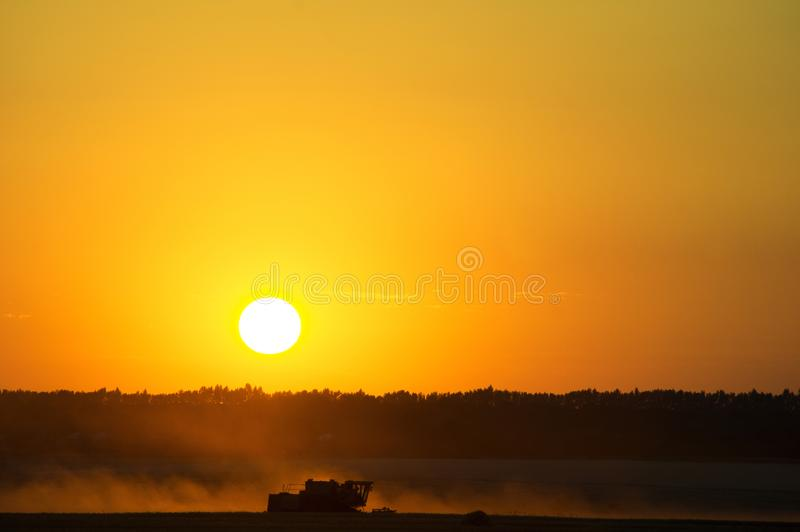 Skörda veteskördearbetaren på den stora röda solnedgångsolen royaltyfri bild
