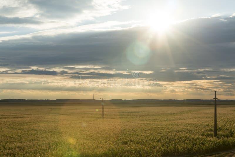 Skördar för lantgård för solnedgångsommarfält royaltyfri bild