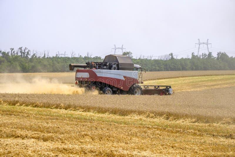 Skördearbetare i dammklubbor på arbete på skörden av vete på ett enormt fält i sommaren Således uppstår födelsen av bröd arkivfoto