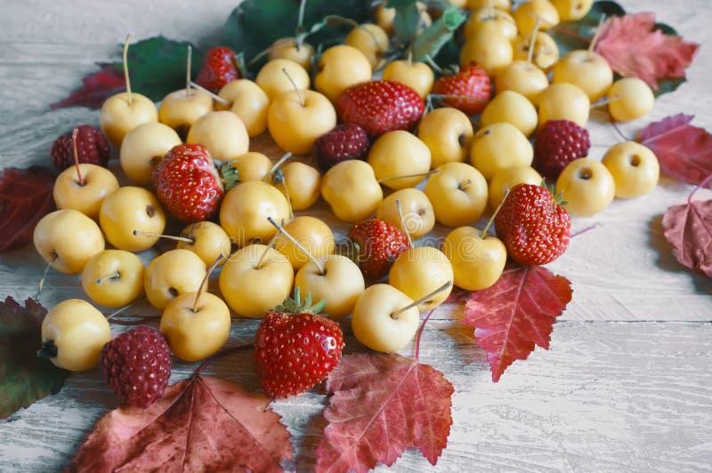 Skörden av höstäpplen och ett härligt rött blad på träbakgrund royaltyfri fotografi