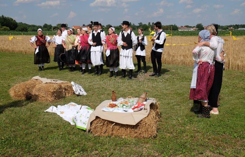 Skörden börjar traditionellt montering byinvånare, att sjunga och att dansa och bra mat arkivbilder