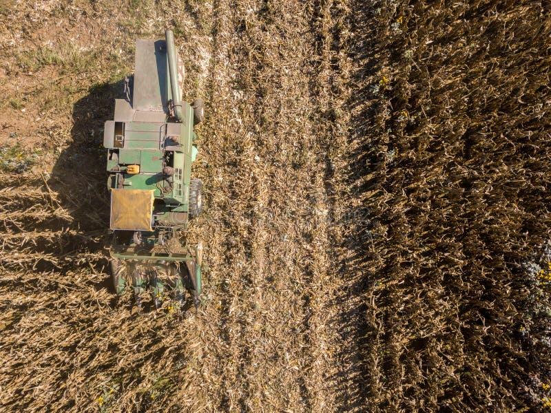 Skördetröskaplockning kärnar ur från fält, flyg- sikt av ett fält med en skördetröska med cornhuskeren som samlar skörden arkivbilder