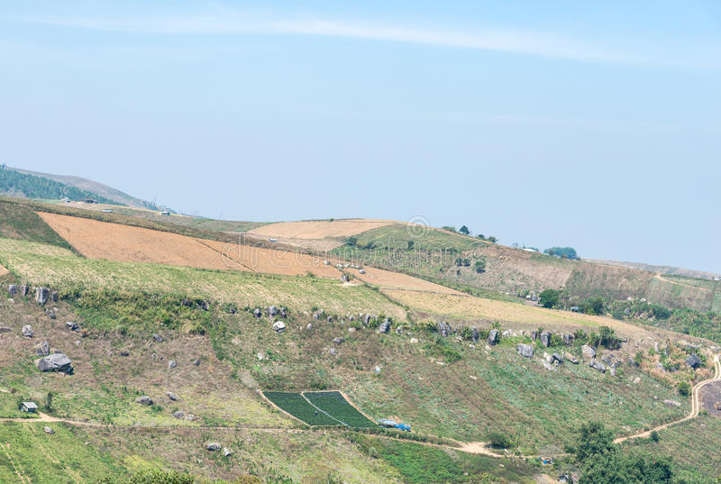 Skördlantgård på det höga berget arkivbilder