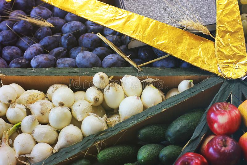 Skördplommoner, lökar, gurkor och äpplen arkivbild