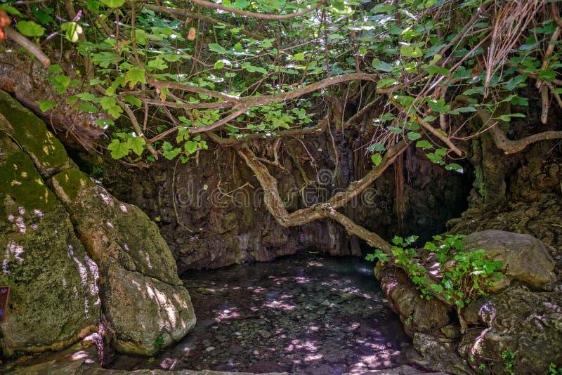 Skąpania Aphrodite na Cypr zdjęcie royalty free