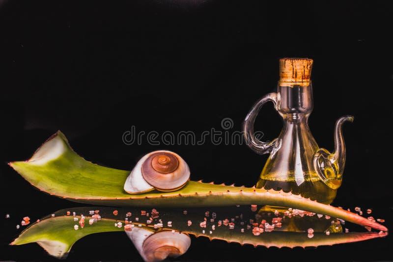 Skład aloesu Vera liść, butelka olej, ślimaczek, morze sól na czarnym tle Zdrowia skincare alternatywa lub rutyna obraz stock